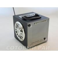 Колонка Активная RX-70 (LCD , Fm , Flash)